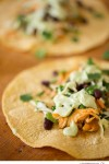 Chipotle Spice Chicken Tacos with Cilantro Slaw and Avocado Cream - Big Sky Little Kitchen