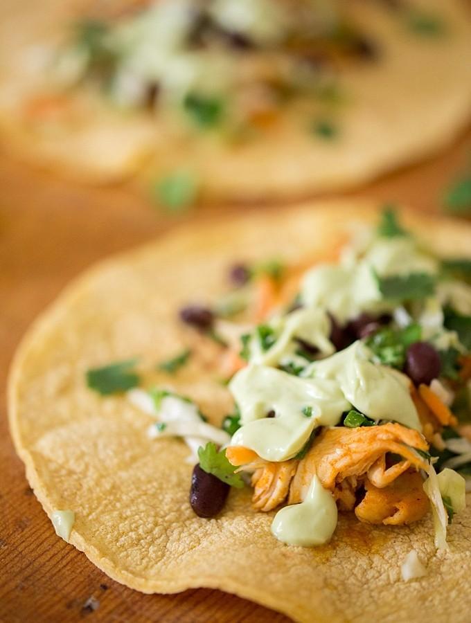 Chipotle Spice Chicken Tacos with Cilantro Slaw and Avocado Cream